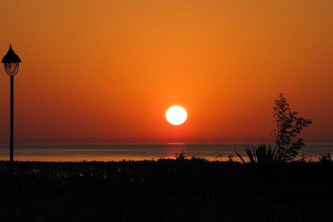 Half Day Abu Dabab Beach - Marsa Alam