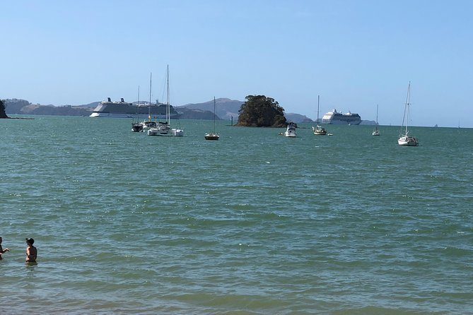 City to City Transfers (Auckland - Paihia & optional sightseeing)