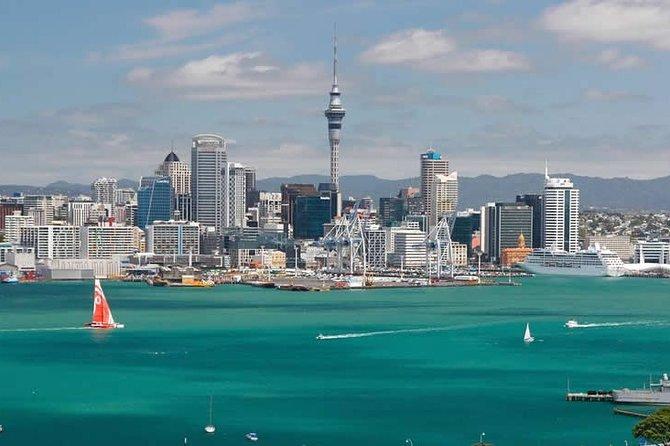 City to City Transfers (Auckland - Hamilton & optional sightseeing)