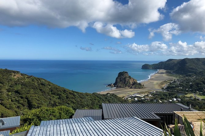 Piha Beach / Rainforest tour