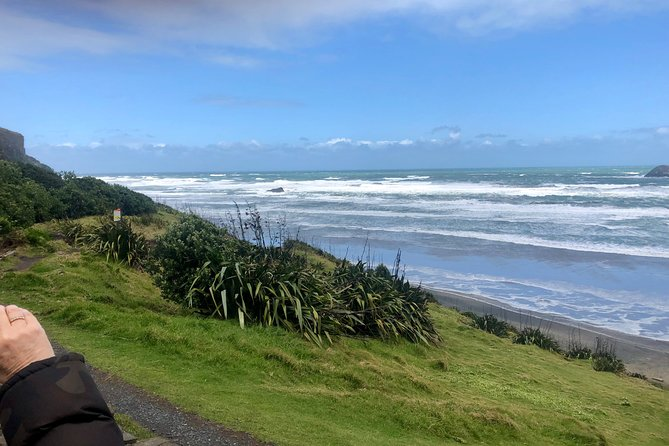 Muriwai Beach / Wine tour photo 7