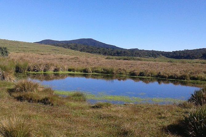 Visit Horton Plains National Park.