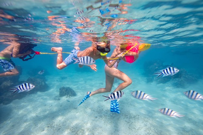 Private Lagoon Snorkeling Tour (includes worldclass photos)