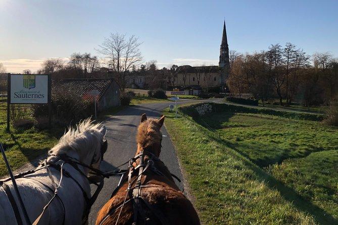Horse-drawn carriage tour - The Châteaux circuit
