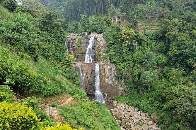 One day Tea factory and Waterfall Tours