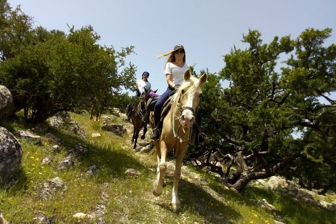 Taghazout Horse Trekking