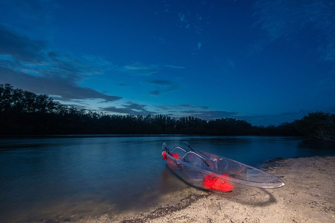 Bioluminescent Clear Kayak Tours in Titusville
