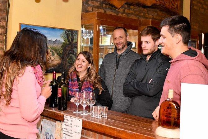 Half day excursion South Wine Routes, San Juan