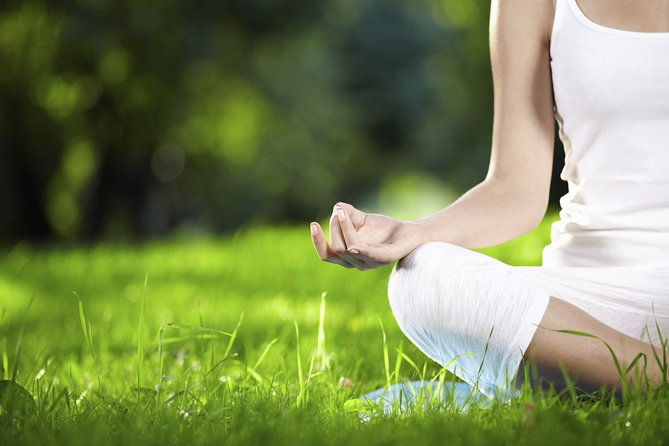 Yoga experience among the Tuscan olive trees and Menu with Wine Tasting