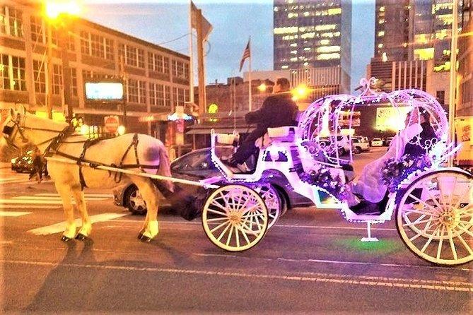 """Paseo en caballo y carruaje de Nashville """"Cinderella Princess"""""""