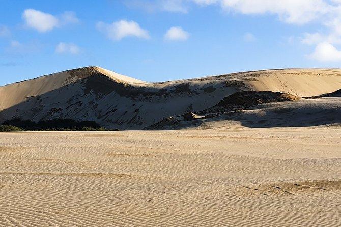 Cape Reinga - 90 Mile Beach Tour