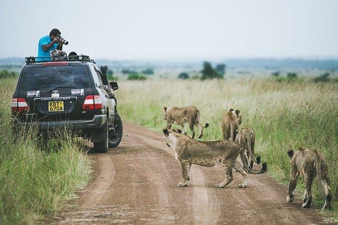 Private Game Drive in Nairobi National Park