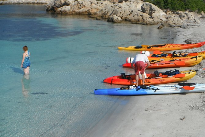Kayak Tour in the Marine Reserve !