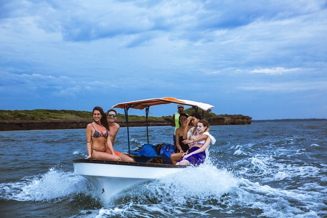 Dolphin Tour; Jozani Forest; Paje Beach & The Rock: Departure From Jambiani