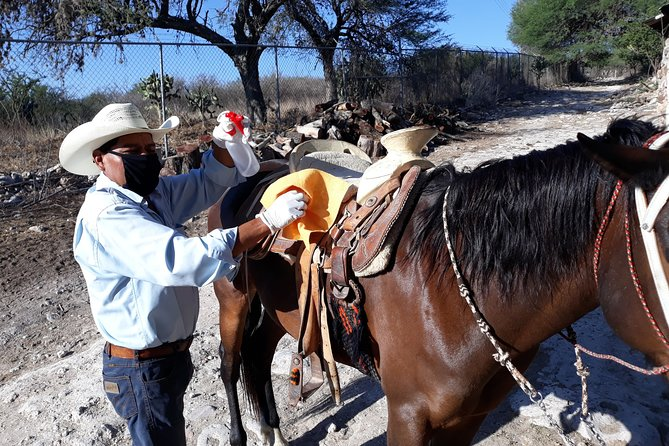 Private Overnight Camping with Trail Riding in San Miguel de Allende