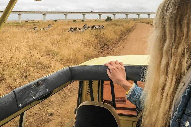 Private Safari Nairobi national park/Elephant & Giraffe Centre