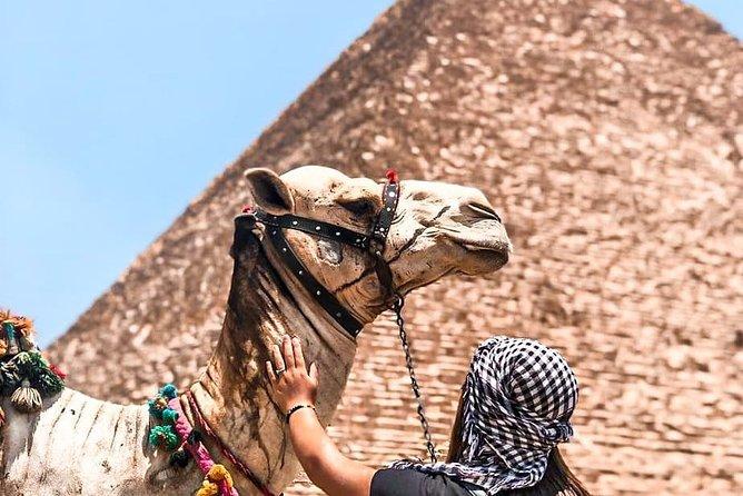 Day tour ro Giza Pyramids, and Sakkara Tour