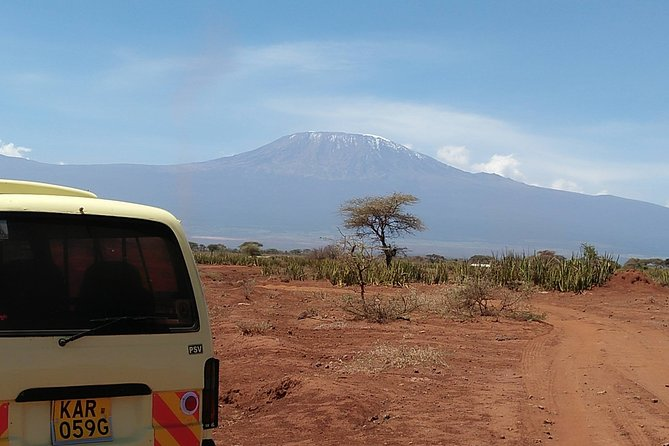 Private Safari Day tour Amboseli national park