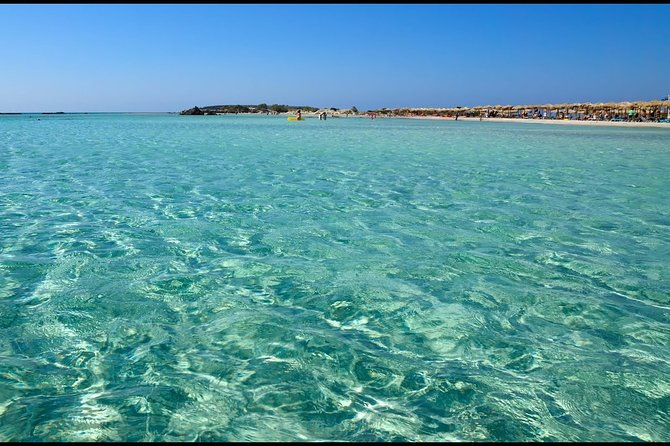Day Cruise to Turtle Archipelago Kuriat Dolphin watch from Tunis and Hammamet