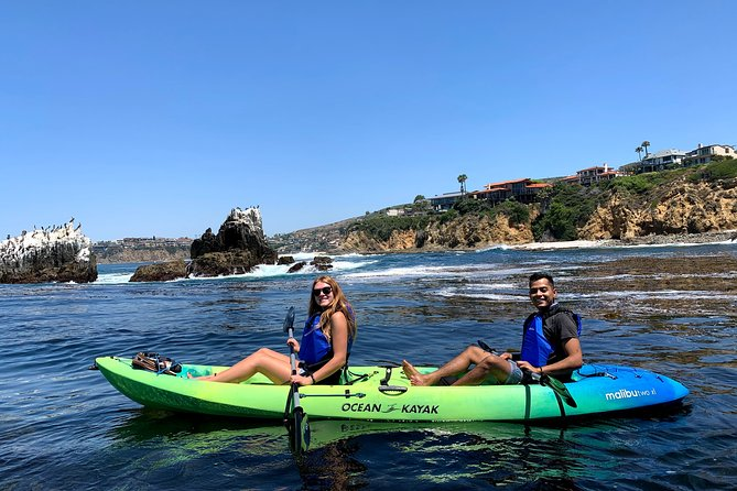 Laguna Beach Open Ocean Kayaking Tour with Sea Lion Sightings