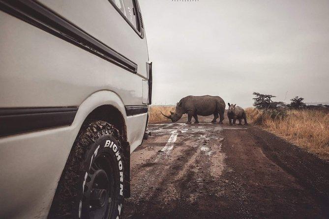 Private Safari Nairobi national park/Elephant Orphanage /Giraffe Centre