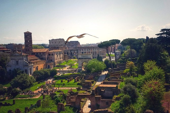 Roman Forum Virtual Tour: Inside Ancient Rome