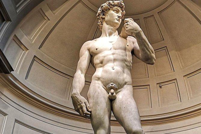 Michelangelo's David Virtual Tour: The Genius of Renaissance Florence