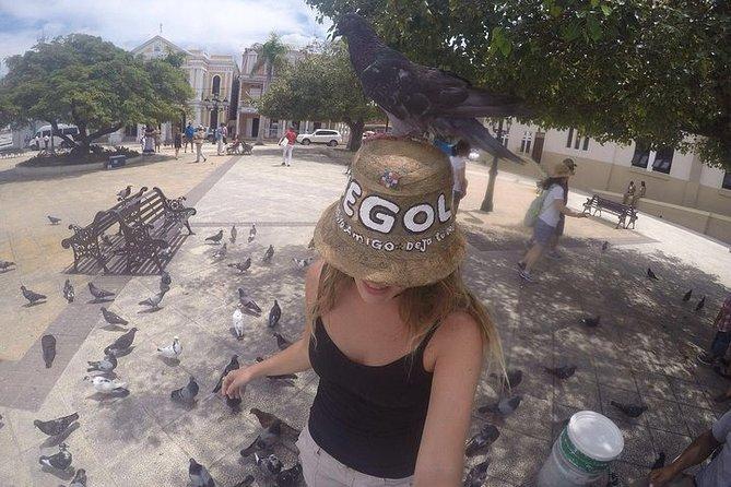Historic Town Highlights & Playa Dorada Beach - Puerto Plata