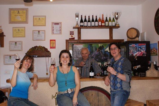 Beaujolais Wine Discovery - Private Tour - Half Day