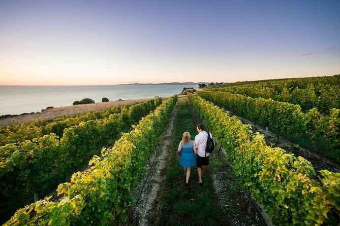 Private Marlborough Winery Tour