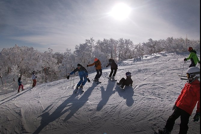 Private Ski Lesson in Madarao Ski Resort
