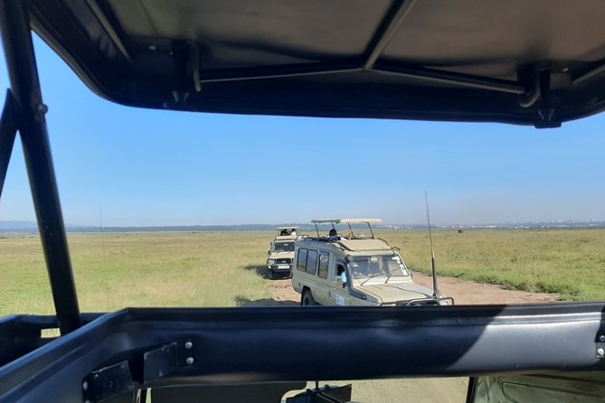 Nairobi National Park Half Day Safari