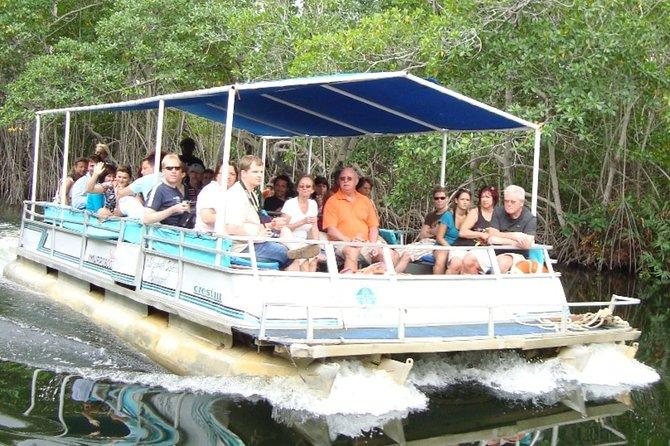 Black River Safari/YS Falls plus Floyd's Pelican Bar Private Tour