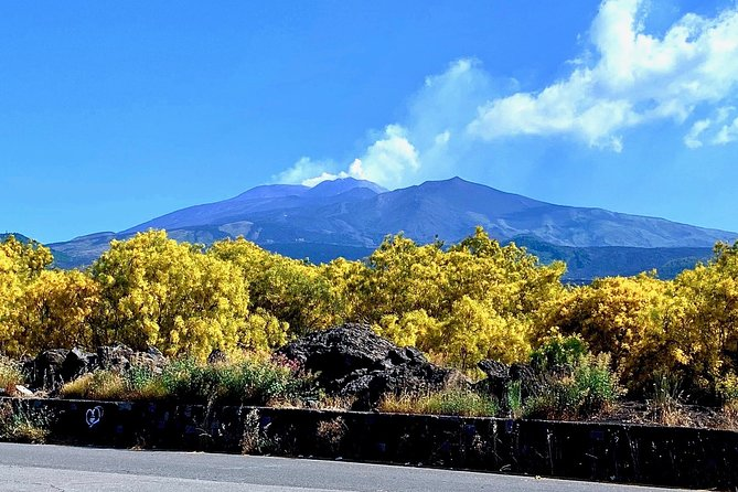 Exclusive MOUNT ETNA Tour - with Local Guide - starts from Palermo