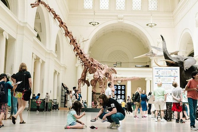 Ingresso para o Field Museum of Natural History