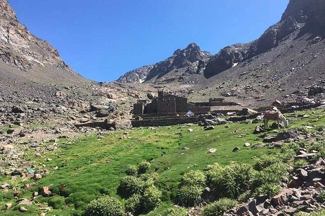 Trekking in Mount Toubkal