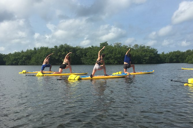 Stand Up Paddle Board Yoga in Sarasota
