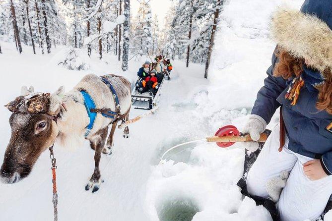 Reindeer Farm & Ice-Fishing Experience