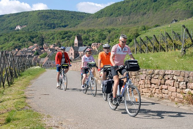 Through Alsace Vineyards and Wine Villages Private Bike Tour