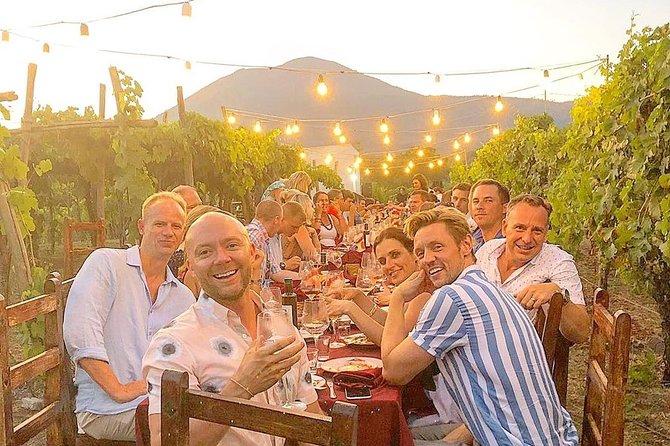 Spaghetti, wine and happiness at Vesuvius