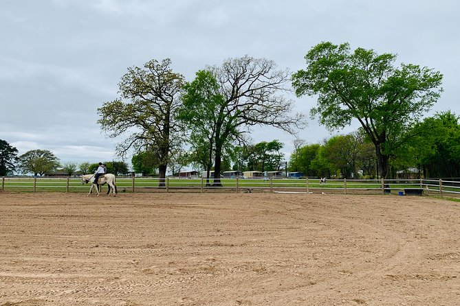 Retired Racehorses Private Riding Experience at Lake Fork