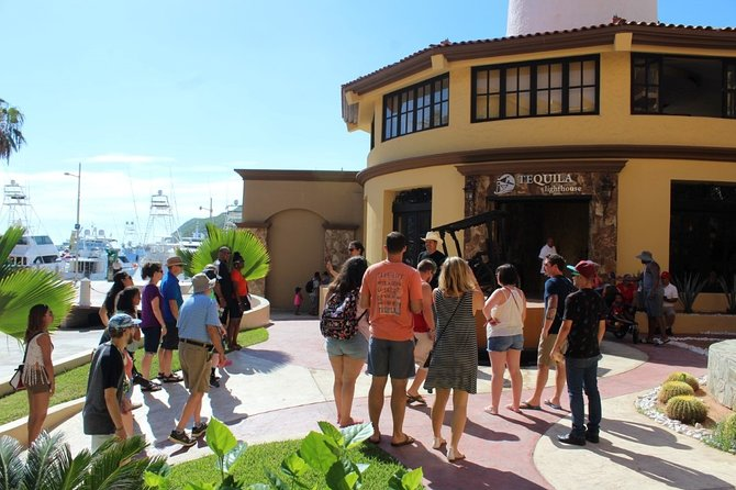 Private Los Cabos Deluxe City tour