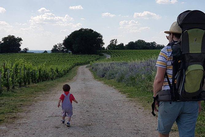 Saint Emilion Self Drive Tour With Your Family Chateaux Visit & Tastings