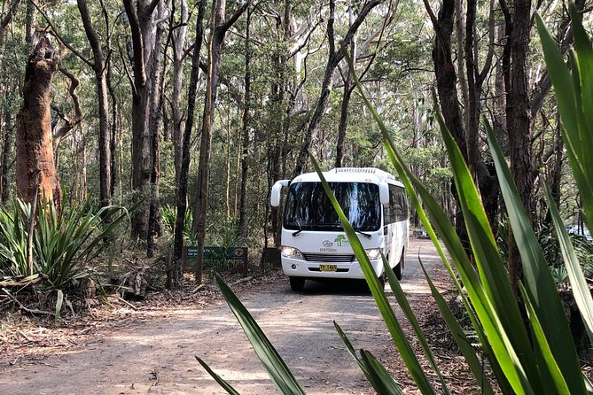 Royal National Park Shuttle Bus to The Coast Track