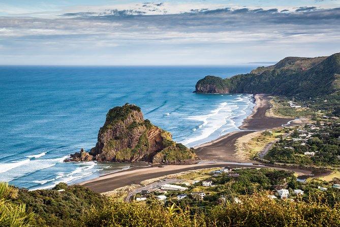 Piha Beach and Waitakere Rangers - Half Day Tour