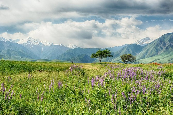 5 days tour to Bishkek city & Chon-Kemin National Park
