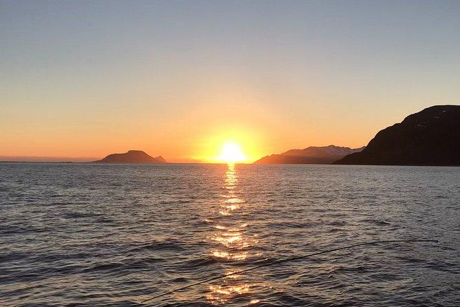 Fra Tromsø all-inclusive Midnight sun cruise med Boat