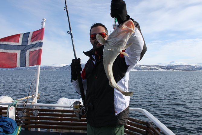 From Tromso all-inclusive Fishing Adventure from Tromso