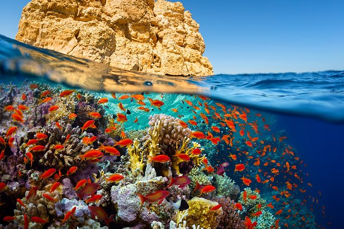 Private Tour to Ras Mohamed, Bedouins, Islands of Tiran and Aqaba gulf