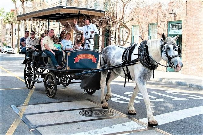Evening Horse-Drawn Carriage Tour of Downtown Charleston